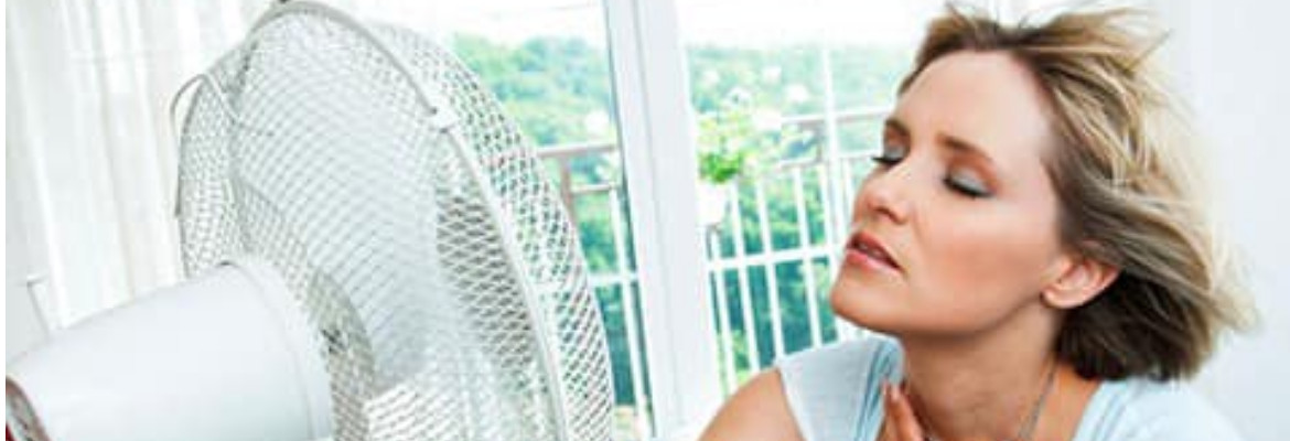 Understanding Menopause Hot Flashes